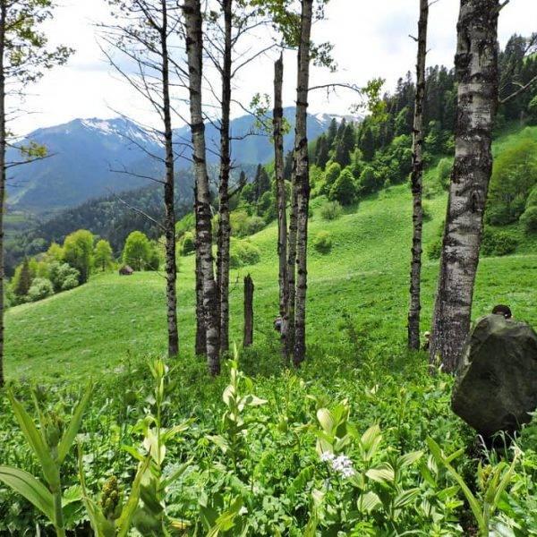 Поход по Кавказу