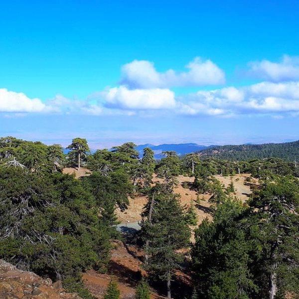 Поход по Кипру «Жемчужина южных морей»