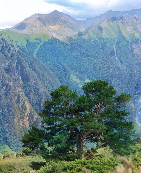 Походы без рюкзаков на Кавказе